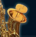 Sourdine pour saxophone